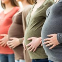 10 غذای مفید در دوران بارداری