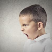 کودکان پرخاشگری را از والدین خود یاد می گیرند!