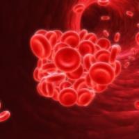 همه چیز درباره کم خونی (بخش ۲)