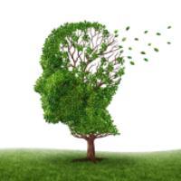 بیماری آلزایمر و نحوه درست رفتار اطرافیان با بیمار