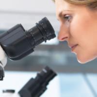 عوارض مصرف آموکسی سیلین