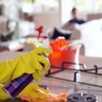 باکتری هایی که در آشپزخانه شما پرسه می زنند!