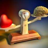 احساسات، مغز و روند تصمیم گیری