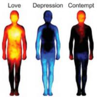 کلیپی جالب از نگاشت احساسات به بدن انسان
