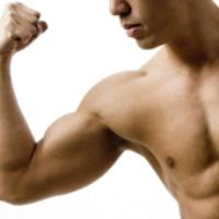 عضله چگونه رشد می کند؟