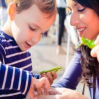 استعداد پروری در کودکان (2)