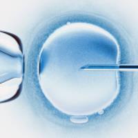 اقدامات لازم برای حفظ بارداری با روش انجماد تخمک