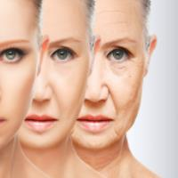 روش هایی برای جلوگیری از پیری پوست