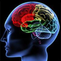 تست روانشناسی چهار عنصری