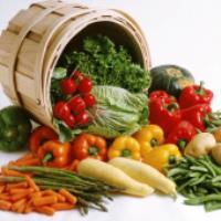 علت تعویض دو هفته یکبار لیست غذایی (دکتر کرمانی)