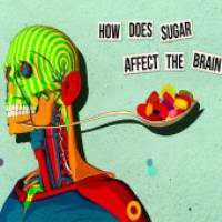 چگونه شکر بر روی مغز تاثیر می گذارد؟