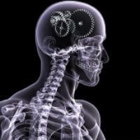 چگونه اشعه ایکس درون بدن را می بیند؟